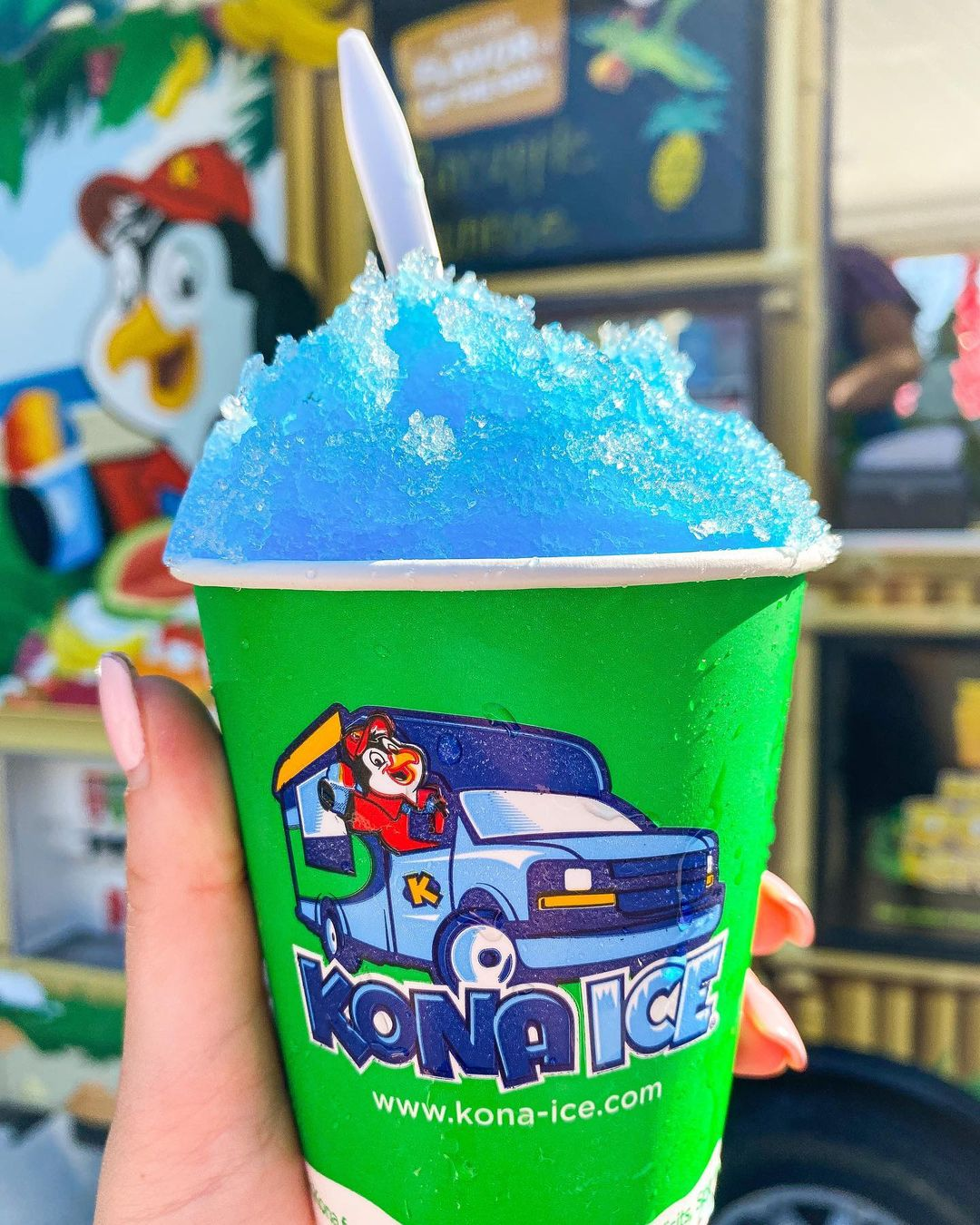 Kona Shaved Ice Food Truck Catering New York
